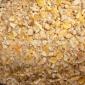 大量供应玉米下脚料(饲料养殖专用)