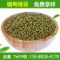 缅甸绿豆非转基因生 49斤每袋 养生熬粥原料五谷杂粮散装批发
