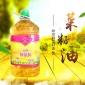 批发新疆压榨菜籽油 5L桶装厨房炒菜植物食用油 商家直供量大从优