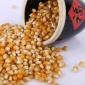 货源供应爆花玉米 农家自产五谷杂粮 散装爆米花专用玉米粒批发