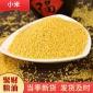 农家黄小米月子米 营养黄金苗小米袋装 五谷杂粮小米粥小米杂粮