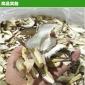 脱水干香菇片 3-7cm香菇丝 香菇条 厂家现货大量批发可出口